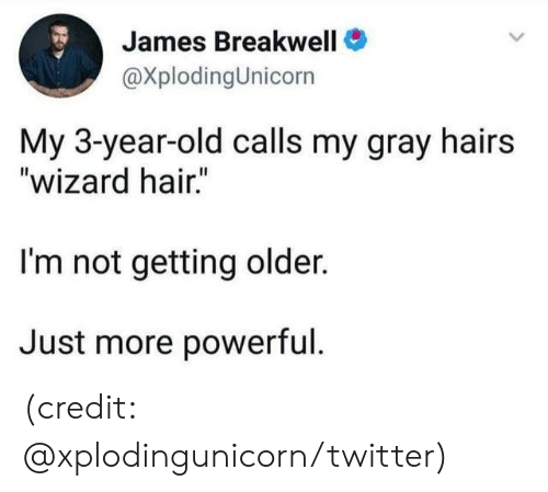 """Getting Older: James Breakwell  @XplodingUnicorn  My 3-year-old calls my gray hairs  """"wizard hair.""""  I'm not getting older.  Just more powerful. (credit: @xplodingunicorn/twitter)"""