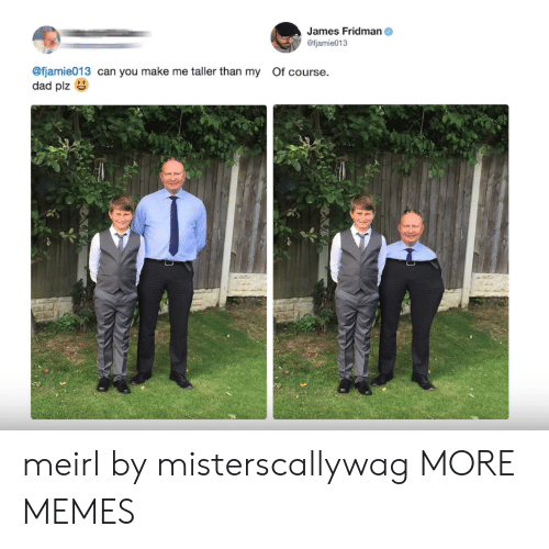 Fjamie013: James Fridman  @fjamie013  @fjamie013 can you make me taller than my Of course.  dad plz meirl by misterscallywag MORE MEMES
