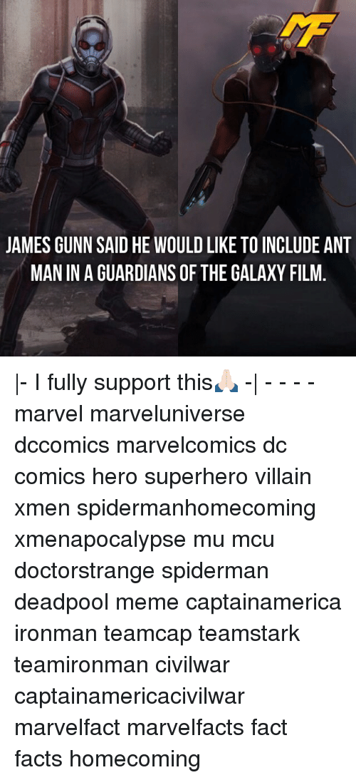 Facts, Meme, and Memes: JAMES GUNN SAID HE WOULD LIKE TO INCLUDE ANT  MAN IN A GUARDIANS OF THE GALAXY FILM |- I fully support this🙏🏻 -| - - - - marvel marveluniverse dccomics marvelcomics dc comics hero superhero villain xmen spidermanhomecoming xmenapocalypse mu mcu doctorstrange spiderman deadpool meme captainamerica ironman teamcap teamstark teamironman civilwar captainamericacivilwar marvelfact marvelfacts fact facts homecoming