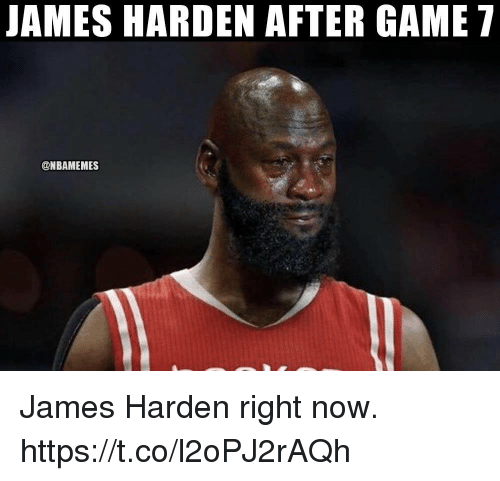 James Harden, Memes, and Game: JAMES HARDEN AFTER GAME 7  @NBAMEMES James Harden right now. https://t.co/l2oPJ2rAQh