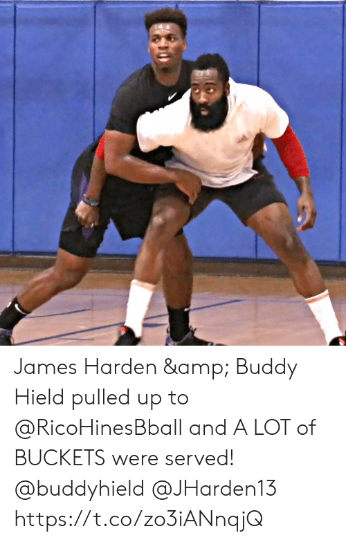 James Harden: James Harden & Buddy Hield pulled up to @RicoHinesBball and A LOT of BUCKETS were served! @buddyhield @JHarden13 https://t.co/zo3iANnqjQ