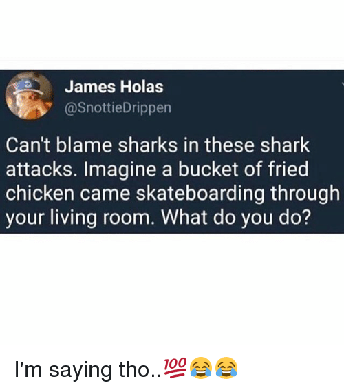 Sharked: James Holas  @SnottieDrippen  Can't blame sharks in these shark  attacks. Imagine a bucket of fried  chicken came skateboarding through  your living room. What do you do? I'm saying tho..💯😂😂