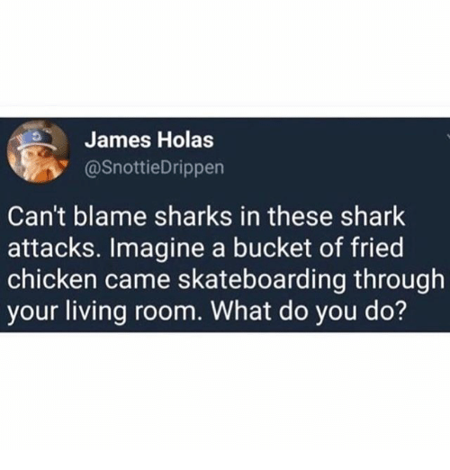Sharked: James Holas  @SnottieDrippen  Can't blame sharks in these shark  attacks. Imagine a bucket of fried  chicken came skateboarding through  your living room. What do you do?