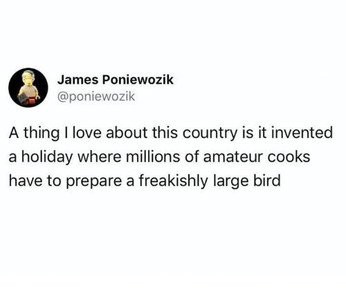 Love, James, and Holiday: James Poniewozik  @poniewozik  A thing I love about this country is it invented  a holiday where millions of amateur cooks  have to prepare a freakishly large bird