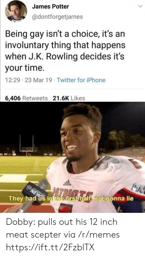 dobby: James Potter  @dontforgetjames  Being gay isn't a choice, it's an  involuntary thing that happens  when J.K. Rowling decides it's  your time.  12:29 23 Mar 19 Twitter for iPhone  6,406 Retweets 21.6K Likes  They had us in the first half, not gonna lie  NEW Dobby: pulls out his 12 inch meat scepter via /r/memes https://ift.tt/2FzblTX