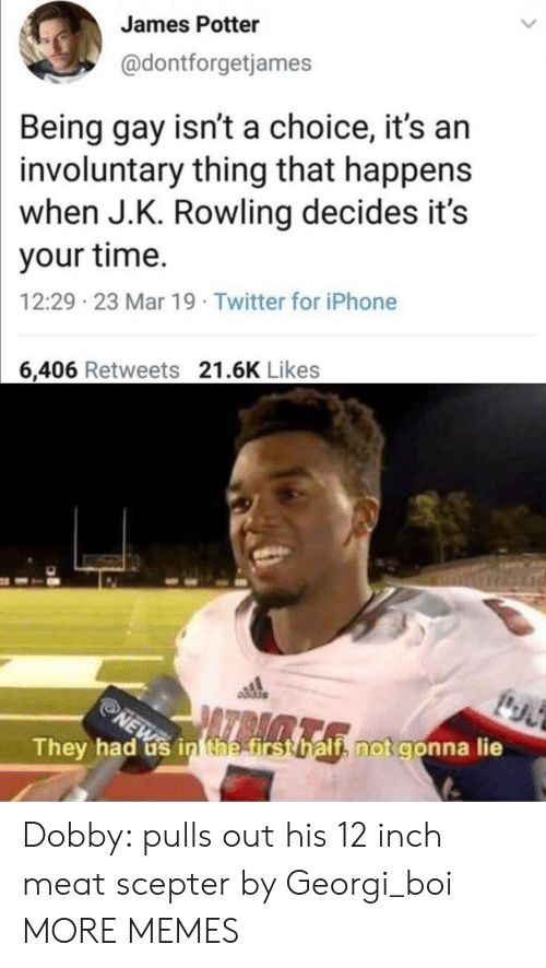 dobby: James Potter  @dontforgetjames  Being gay isn't a choice, it's arn  involuntary thing that happens  when J.K. Rowling decides it's  your time.  12:29 23 Mar 19 Twitter for iPhone  6,406 Retweets 21.6K Likes  They had us in tnetirst halt notgonn  a lie Dobby: pulls out his 12 inch meat scepter by Georgi_boi MORE MEMES
