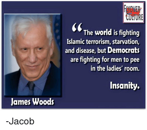 Memes, World, and Insanity: James Woods  INil  The world is fighting  Islamic terrorism, starvation,  and disease, but Democrats  are fighting for men to pee  in the ladies' room.  Insanity. -Jacob