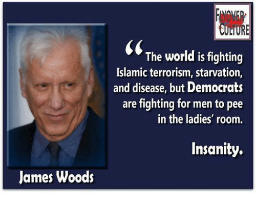 Memes, Islam, and Insanity: James Woods  INil  The world is fighting  Islamic terrorism, starvation,  and disease, but Democrats  are fighting for men to pee  in the ladies' room.  Insanity.