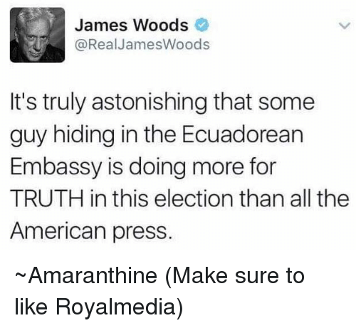 Memes, American, and Astonishing: James Woods  @Real James Woods  It's truly astonishing that some  guy hiding in the Ecuadorean  Embassy is doing more for  TRUTH in this election than all the  American press. ~Amaranthine  (Make sure to like Royalmedia)