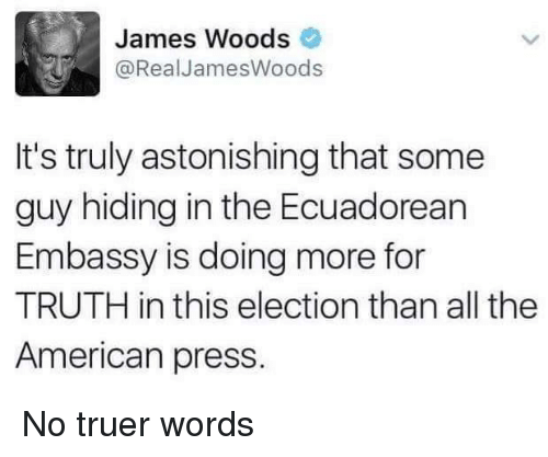 Memes, American, and Word: James Woods  @Real James Woods  It's truly astonishing that some  guy hiding in the Ecuadorean  Embassy is doing more for  TRUTH in this election than all the  American press. No truer words