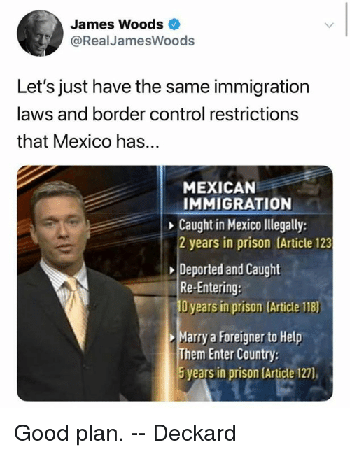 Memes, Control, and Prison: James Woods  @Real JamesWoods  Let's just have the same immigration  laws and border control restrictions  that Mexico has...  MEXICAN  IMMIGRATION  Caught in Mexico llegally:  2 years in prison (Article 123  Deported and Caught  Re-Entering:  O years in prison (Article 118)  Marry a Foreigner to Help  Them Enter Country  5 years in prison Article 127), Good plan.    -- Deckard