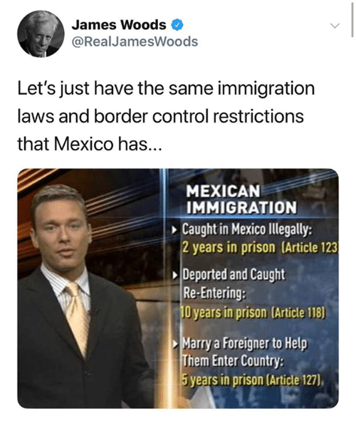 Control, Prison, and Help: James Woods  @Real JamesWoods  Let's just have the same immigration  laws and border control restrictions  that Mexico has...  MEXICAN  IMMIGRATION  Caught in Mexico Illegally:  2 years in prison (Article 123  Deported and Caught  Re-Entering:  O years in prison (Article 118)  Marry a Foreigner to Help  Them Enter Country  5years in prison (Article 127),