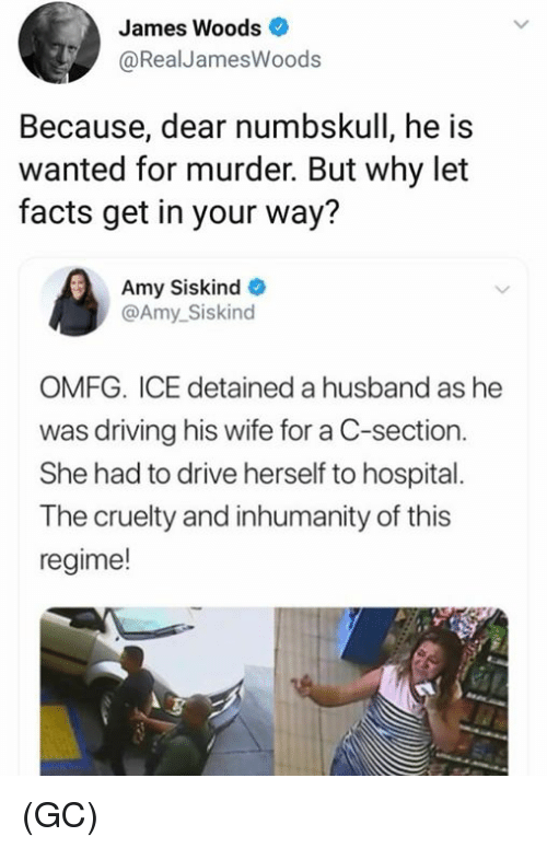 c section: James Woods  RealJamesWoods  Because, dear numbskull, he is  wanted for murder. But why let  facts get in your way?  Amy Siskind  @Amy_Siskind  OMFG. ICE detained a husband as he  was driving his wife for a C-section.  She had to drive herself to hospital.  The cruelty and inhumanity of this  regime! (GC)