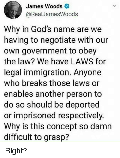 Immigration, Government, and James Woods: James Woods  @RealJamesWoods  Why in God's name are we  having to negotiate with our  own government to obey  the law? We have LAWS for  legal immigration. Anyone  who breaks those laws or  enables another person to  do so should be deported  or imprisoned respectively.  Why is this concept so damn  difficult to grasp? Right?
