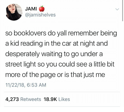 Jami: JAMI  @jamishelves  so booklovers do yall remember being  a kid reading in the car at night and  desperately waiting to go under a  street light so you could see a little bit  more of the page or is that just me  11/22/18, 6:53 AM  4,273 Retweets 18.9K Like:s