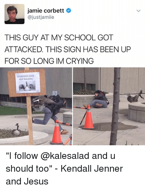 """Jamie Corbett: jamie Corbett  ajustjamiie  THIS GUY AT MY SCHOOL GOT  ATTACKED. THIS SIGN HAS BEEN UP  FOR SO LONG IM CRYING  AGGRESSIVE GEESE  KEEP WALKING """"I follow @kalesalad and u should too"""" - Kendall Jenner and Jesus"""