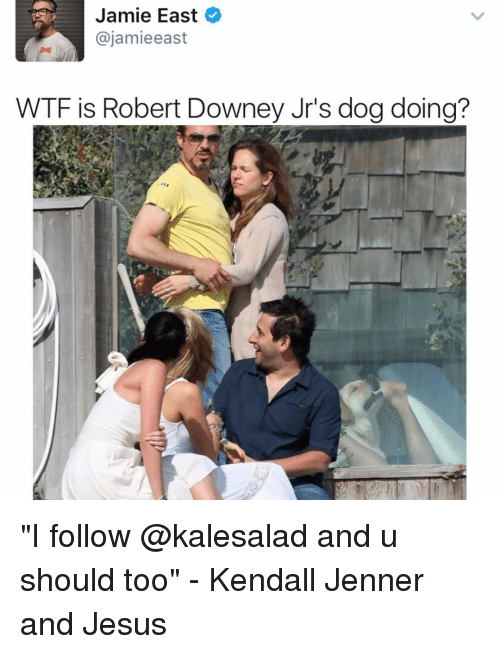 "Jami: Jamie East  ajamieeast  WTF is Robert Downey Jr's dogdoing? ""I follow @kalesalad and u should too"" - Kendall Jenner and Jesus"