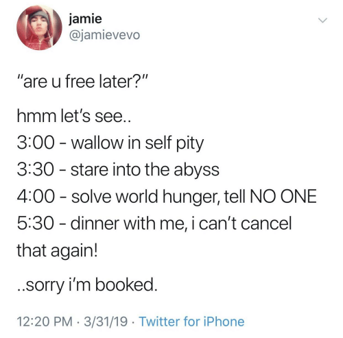"""wallow in self pity: jamie  @jamievevo  """"are u free later?""""  hmm let's see  3:00 - wallow in self pity  3:30 - stare into the abyss  4:00 solve world hunger, tell NO ONE  5:30 - dinner with me, i can't cancel  that again!  sorry i'm booked  12:20 PM 3/31/19 Twitter for iPhone"""
