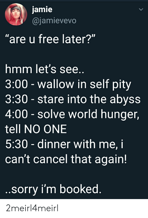 """wallow in self pity: jamie  @jamievevo  """"are u free later?""""  mm let's See  3:00 - wallow in self pity  3:30 - stare into the abyss  4:00- solve world hunger,  tell NO ONE  5:30 - dinner with me, i  can't cancel that again!  sorry i'm booked 2meirl4meirl"""