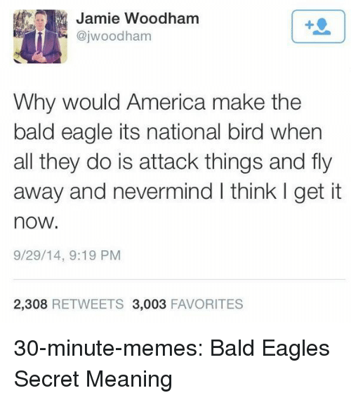 nevermind: Jamie Woodham  @jwoodham  1  Why would America make the  bald eagle its national bird when  all they do is attack things and fly  away and nevermind I think I get it  now.  9/29/14, 9:19 PM  2,308 RETWEETS 3,003 FAVORITES 30-minute-memes:  Bald Eagles Secret Meaning