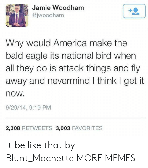 nevermind: Jamie Woodham  @jwoodham  1  Why would America make the  bald eagle its national bird when  all they do is attack things and fly  away and nevermind I think I get it  now.  9/29/14, 9:19 PM  2,308 RETWEETS 3,003 FAVORITES It be like that by Blunt_Machette MORE MEMES