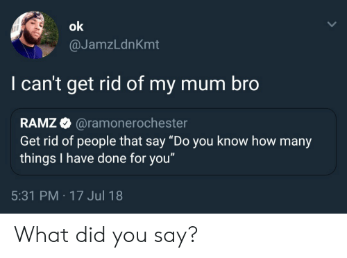 "How, Did, and You: @JamzLdnKmt  I can't get rid of my mum bro  RAMZ @ramonero  Get rid of people that say ""Do you know how many  things I have done for you""  chester  5:31 PM -17 Jul 18 What did you say?"