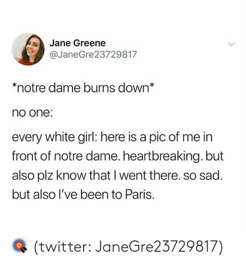 Pic Of Me: Jane Greene  @JaneGre23729817  *notre dame burns down*  no one:  every white girl: here is a pic of me in  front of notre dame. heartbreaking. but  also plz know that I went there. so sad.  but also l've been to Paris. 🎯 (twitter: JaneGre23729817)