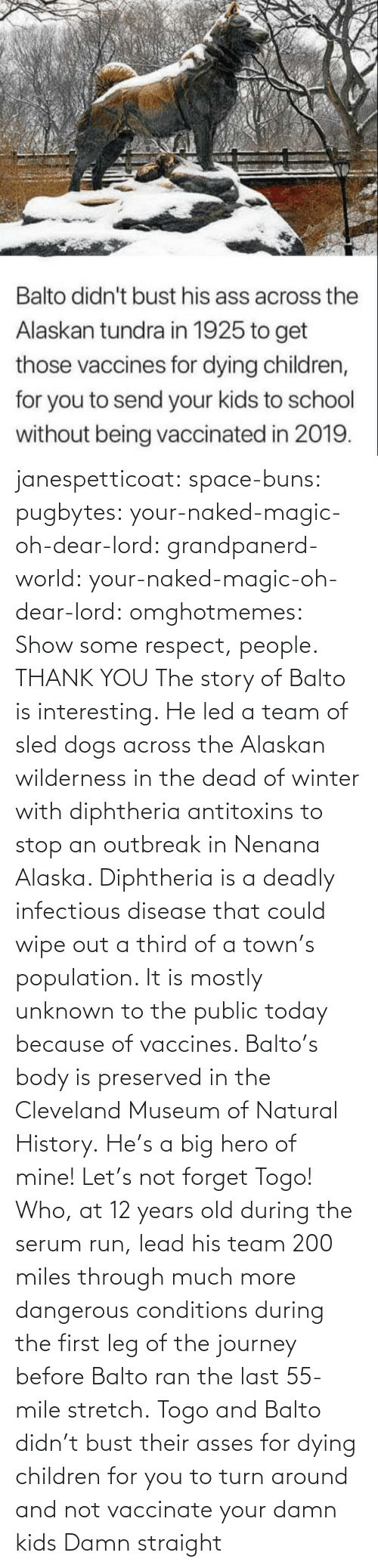 Naked: janespetticoat: space-buns:  pugbytes:   your-naked-magic-oh-dear-lord:  grandpanerd-world:   your-naked-magic-oh-dear-lord:  omghotmemes: Show some respect, people.  THANK YOU   The story of Balto is interesting. He led a team of sled dogs across the Alaskan wilderness in the dead of winter with diphtheria antitoxins to stop an outbreak in Nenana Alaska. Diphtheria is a deadly infectious disease that could wipe out a third of a town's population. It is mostly unknown to the public today because of vaccines. Balto's body is preserved in the Cleveland Museum of Natural History.   He's a big hero of mine!   Let's not forget Togo! Who, at 12 years old during the serum run, lead his team 200 miles through much more dangerous conditions during the first leg of the journey before Balto ran the last 55-mile stretch.   Togo and Balto didn't bust their asses for dying children for you to turn around and not vaccinate your damn kids    Damn straight
