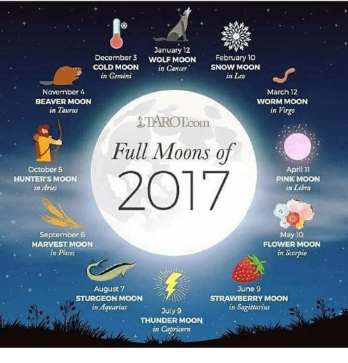 Funny Moon Memes Of 2017 On Sizzle Mooned