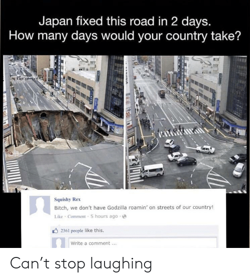 Rex: Japan fixed this road in 2 days.  How many days would your country take?  Squishy Rex  Bitch, we don't have Godzilla roamin' on streets of our country!  Like Comment 5 hours ago  2361 people like this.  Write a comment Can't stop laughing
