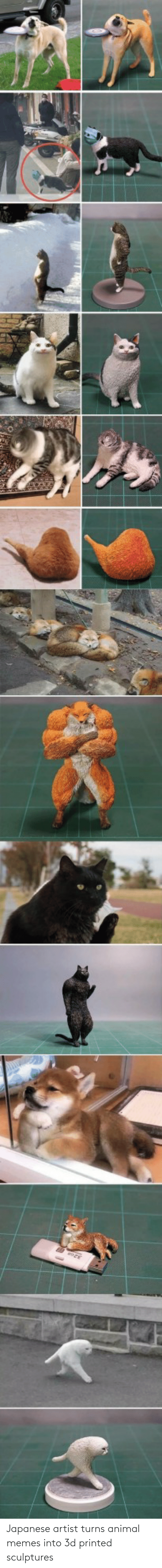 Japanese: Japanese artist turns animal memes into 3d printed sculptures