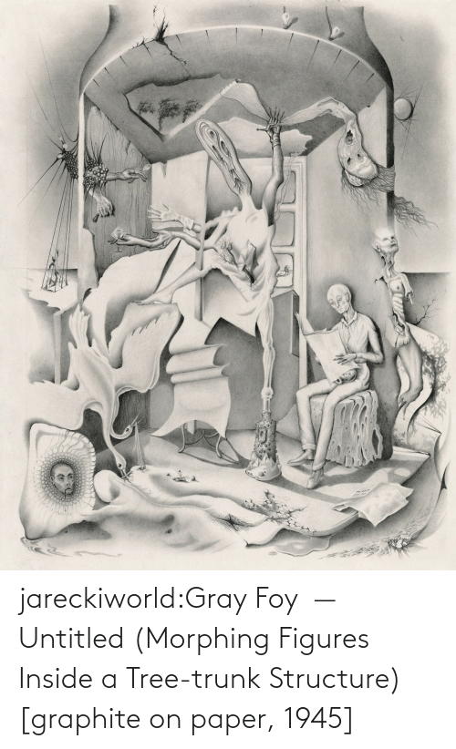 Tumblr, Blog, and Tree: jareckiworld:Gray Foy — Untitled (Morphing Figures Inside a Tree-trunk Structure) [graphite on paper, 1945]