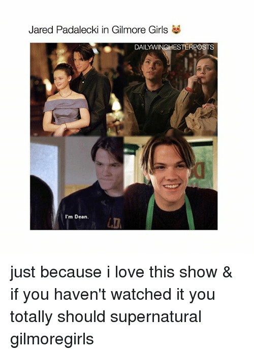 Gilmore Girls: Jared Padalecki in Gilmore Girls  DAILYWINGHESTERPOSTS  I'm Dean. just because i love this show & if you haven't watched it you totally should supernatural gilmoregirls