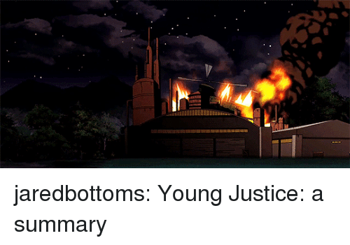 Young Justice: jaredbottoms: Young Justice: a summary