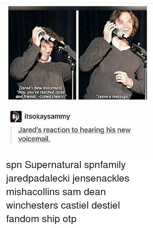 crowd cheering: Jared's New VoicemaU  'Hey, youve reached Jared  and friends. Crowd cheers  Leave a messoge.  itsokay sammy  Jared's reaction to hearing his new  voicemail. spn Supernatural spnfamily jaredpadalecki jensenackles mishacollins sam dean winchesters castiel destiel fandom ship otp