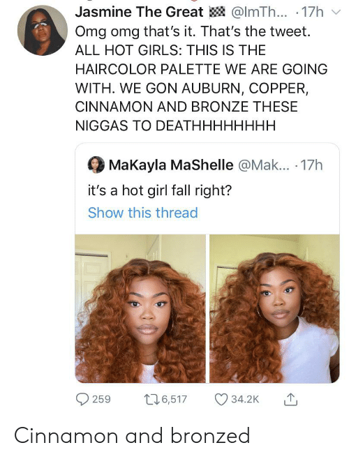 Makayla: Jasmine The Great @ImTh... .17h  Omg omg that's it. That's the tweet.  ALL HOT GIRLS: THIS IS THE  HAIRCOLOR PALETTE WE ARE GOING  WITH. WE GON AUBURN, COPPER,  CINNAMON AND BRONZE THESE  NIGGAS TO DEATHHHHHHHH.  MaKayla MaShelle @Mak... 17h  it's a hot girl fall right?  Show this thread  t16,517  34.2K  259 Cinnamon and bronzed