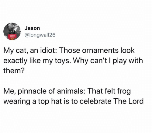 Pinnacle: Jason  @longwall26  My cat, an idiot: Those ornaments look  exactly liKe my toys. Why can'ti play with  them?  Me, pinnacle of animals: That felt frog  wearing a top hat is to celebrate The Lord