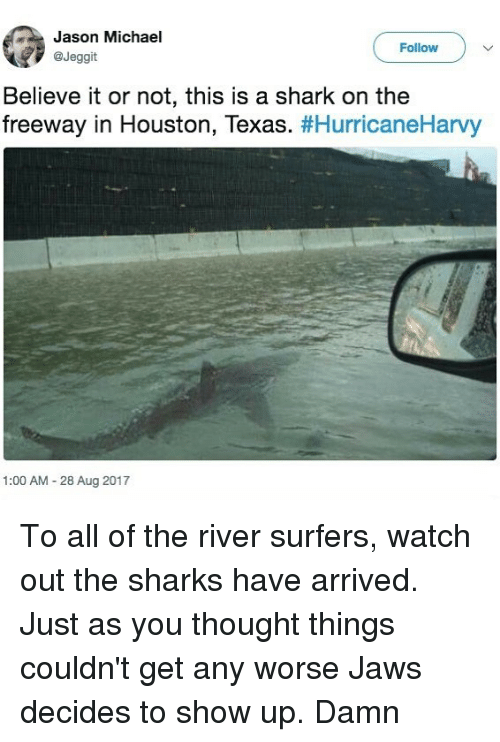 sharking: Jason Michael  @Jeggit  Follow  Believe it or not, this is a shark on the  freeway in Houston, Texas. #HurricaneHarvy  1:00 AM 28 Aug 2017 To all of the river surfers, watch out the sharks have arrived. Just as you thought things couldn't get any worse Jaws decides to show up. Damn