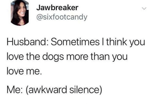 You Love Me: Jawbreaker  @sixfootcandy  Husband: Sometimes I think you  love the dogs more than you  love me.  Me: (awkward silence)