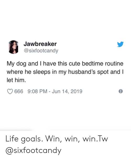 Cute, Goals, and Instagram: Jawbreaker  @sixfootcandy  My dog and I have this cute bedtime routine  where he sleeps in my husband's spot and I  let him  666 9:08 PM - Jun 14, 2019 Life goals. Win, win, win.Tw @sixfootcandy