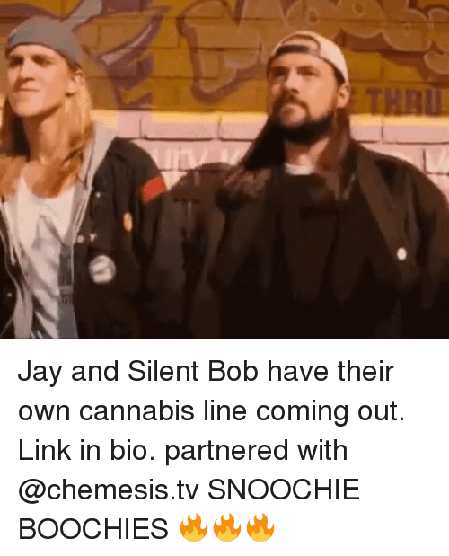 jay and silent bob: Jay and Silent Bob have their own cannabis line coming out. Link in bio. partnered with @chemesis.tv SNOOCHIE BOOCHIES 🔥🔥🔥