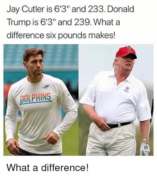 "cutler: Jay Cutler is 6'3"" and 233. Donald  Trump is 6'3"" and 239. What a  difference six pounds makes!  DOLPHINS What a difference!"