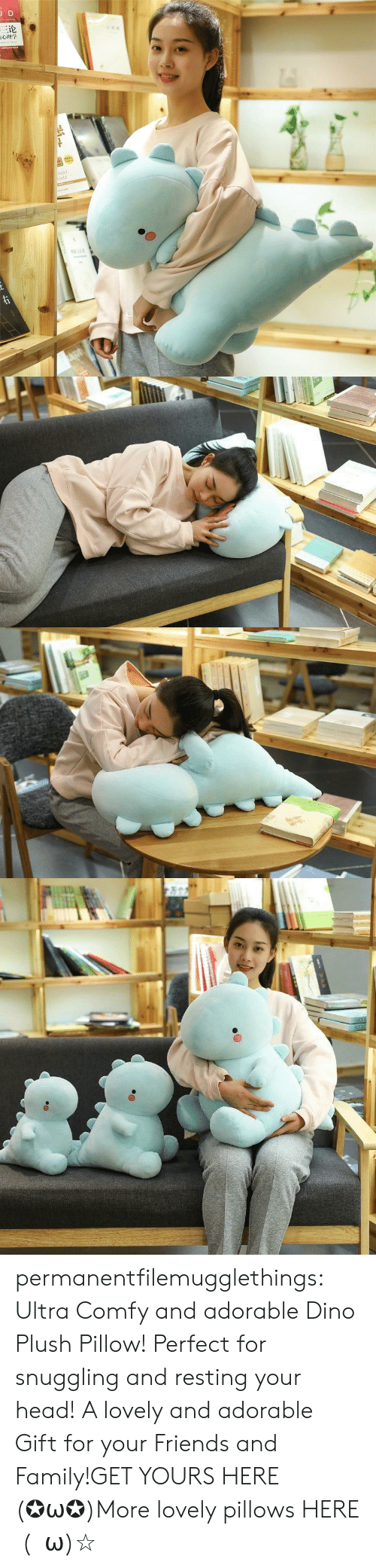 pillows: JD  三论  laint  orld  TDNAR  ww.e permanentfilemugglethings:  Ultra Comfy and adorable Dino Plush Pillow! Perfect for snuggling and resting your head! A lovely and adorable Gift for your Friends and Family!GET YOURS HERE (✪ω✪)More lovely pillows HERE  (・ω)☆