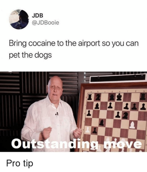 Pro Tip: JDB  @JDBooie  Bring cocaine to the airport so you can  pet the dog:s  Outstanding iove Pro tip