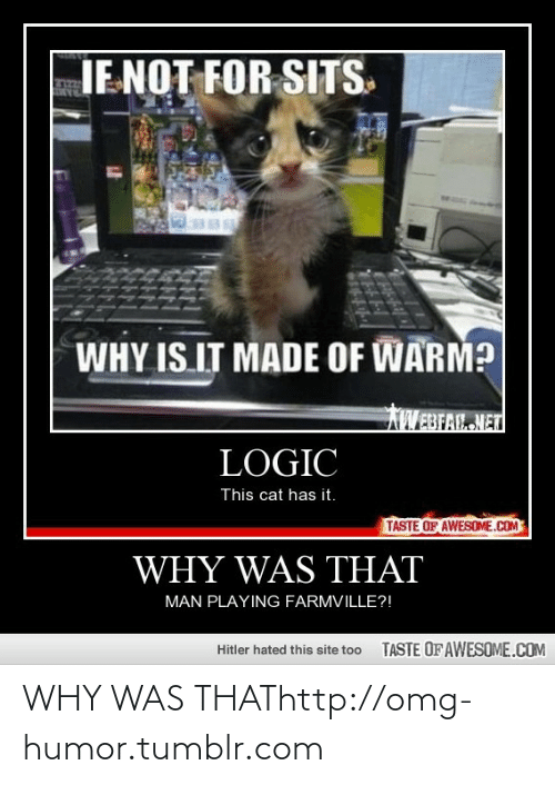 FarmVille: JE NOT FOR SITS.  WHY IS IT MADE OF WARM?  AWEBFAL NET  LOGIC  This cat has it.  TASTE OF AWESOME.COM  WHY WAS THAT  MAN PLAYING FARMVILLE?!  TASTE OF AWESOME.COM  Hitler hated this site too WHY WAS THAThttp://omg-humor.tumblr.com