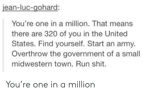 An Army: jean-luc-gohard:  You're one in a million. That means  there are 320 of you in the United  States. Find yourself. Start an army.  Overthrow the government of a small  midwestern town. Run shit. You're one in a million
