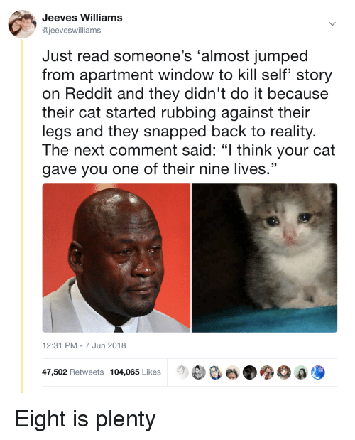 """Reddit, Jumped, and Reality: Jeeves Williams  @jeeveswilliams  Just read someone's 'almost jumped  from apartment window to kill self' story  on Reddit and they didn't do it because  their cat started rubbing against their  legs and they snapped back to reality  The next comment said: """"I think your cat  gave you one of their nine lives.""""  12:31 PM-7 Jun 2018  ee e.  0 a,  47,502 Retweets 104,065 Likes <p>Eight is plenty</p>"""