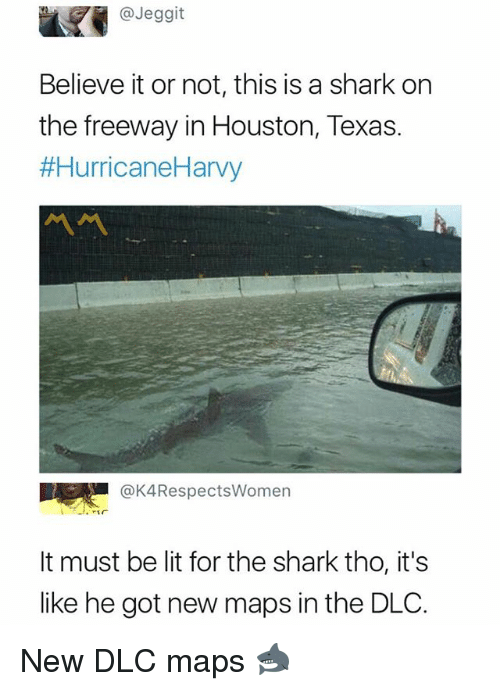 Sharked: @Jeggit  Believe it or not, this is a shark on  the freeway in Houston, Texas.  #HurricaneHarvy  @K4RespectsWomen  It must be lit for the shark tho, it's  like he got new maps in the DLO. New DLC maps 🦈