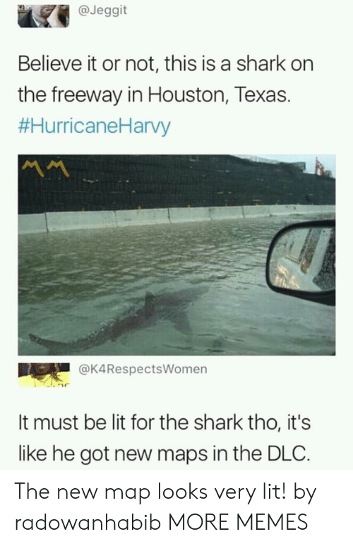 houston texas: @Jeggit  Believe it or not, this is a shark on  the freeway in Houston, Texas.  #HurricaneHarvy  서서  @K4RespectsWomen  It must be lit for the shark tho, it's  like he got new maps in the DLC. The new map looks very lit! by radowanhabib MORE MEMES