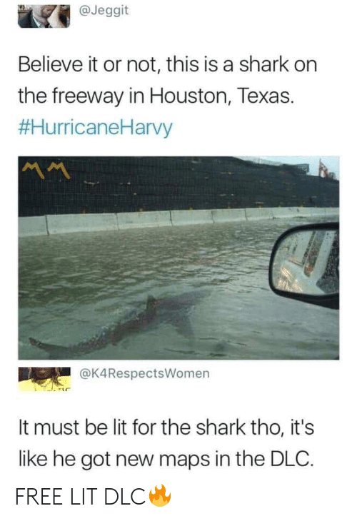dlc: @Jeggit  Believe it or not, this is a shark on  the freeway in Houston, Texas.  #HurricaneHarvy  @K4RespectsWomen  It must be lit for the shark tho, it's  like he got new maps in the DLC. FREE LIT DLC🔥